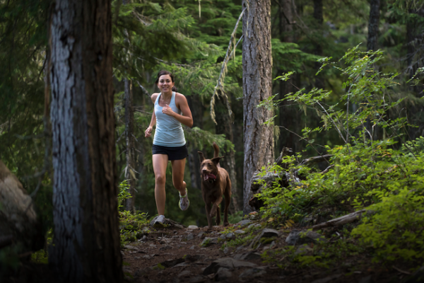 Safety Tips for Animal Encounters While Running